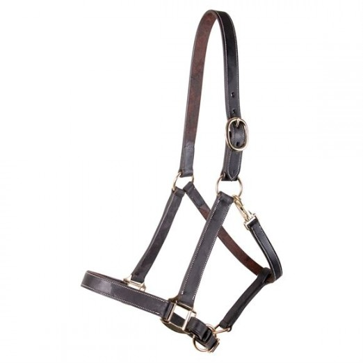 Billy Royal® Kentucky Leather Halter