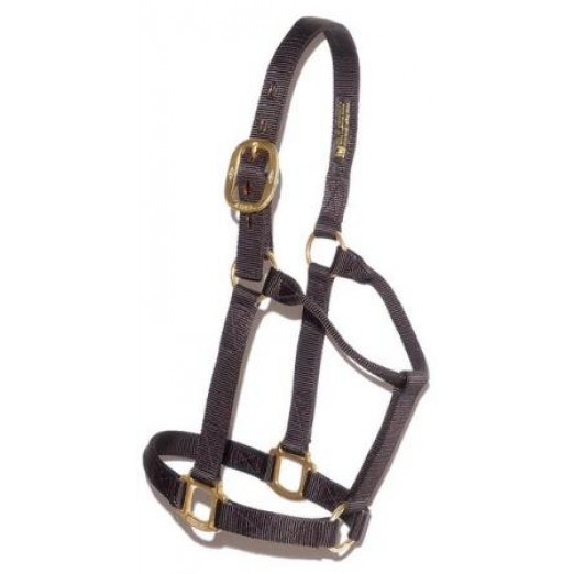 #102 Big D Medium Horse Halter